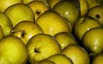Frutas Ponti